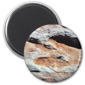Dinosaur Tracks North Of Flagstaff Magnet