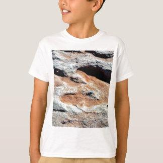 Dinosaur Tracks North Of Flagstaff T-Shirt