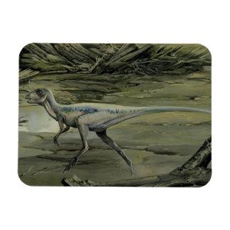 Dinosaurio de Hypsilophodon del vintage Iman Rectangular