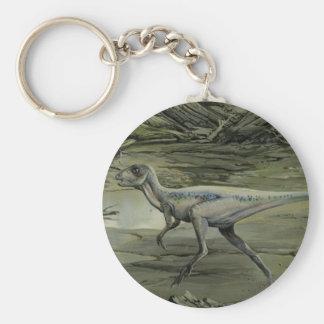 Dinosaurio de Hypsilophodon del vintage Llavero Personalizado
