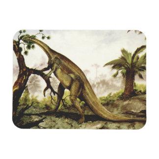 Dinosaurio del Plateosaurus del vintage que pasta  Imán