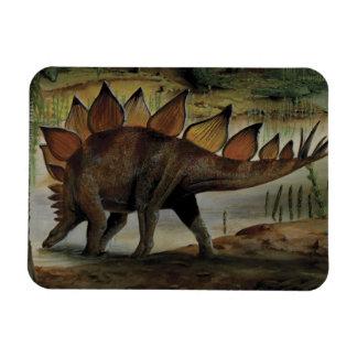 Dinosaurio del vintage, Stegosaurus, cola con los  Imán De Vinilo