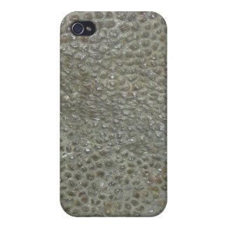 Dinosaurio iPhone 4 Carcasas