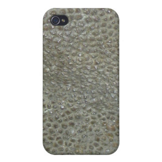 Dinosaurio iPhone 4/4S Fundas