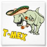 Dinosaurio mexicano del Tyrannosaurus de T-Mex T-R Fotografía