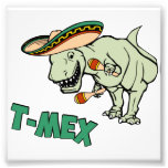 Dinosaurio mexicano del Tyrannosaurus de T-Mex T-R Fotografias