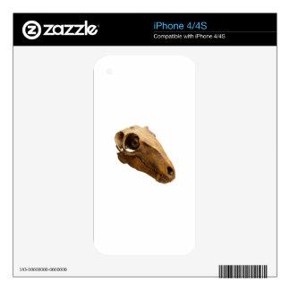 Dinosaurio sonriente skin para el iPhone 4S