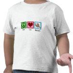 Dinosaurios del amor de la paz camiseta