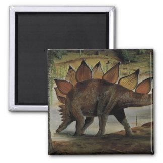 Dinosaurios del vintage, Stegosaurus, cola con los Imán Cuadrado