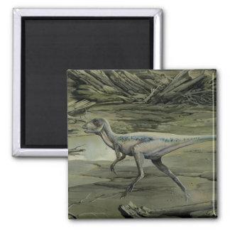 Dinosaurios del vintage, un Hypsilophodon cretáceo Imán Cuadrado