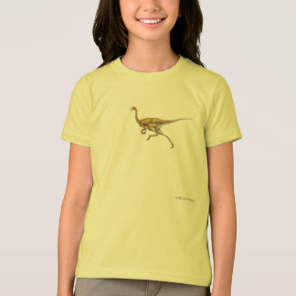 Dinosaurs 63 T-Shirt