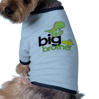 dinosaurs big brother pet t-shirt