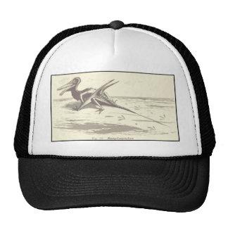 Dinosaurs: Rhamphorhynchus Mesh Hats