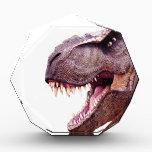 """Dinosaurs T-Rex Award<br><div class=""""desc"""">Dinosaurs T-Rex</div>"""