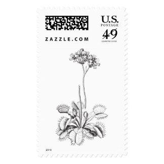 Dionaea muscipula postage stamp