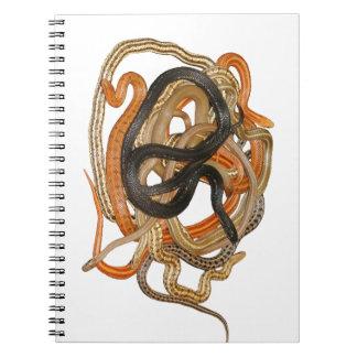 Dione Ratsnake Spiral Notebook