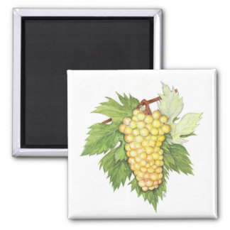 Dionysus & Rhea Collection 2 Inch Square Magnet
