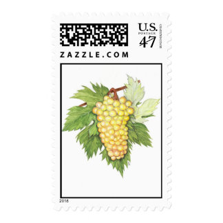 Dionysus & Rhea Collection Postage Stamp