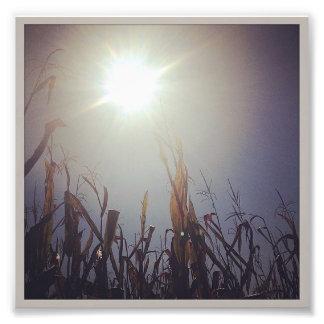 Dios 2 del Sun-Maíz Arte Con Fotos