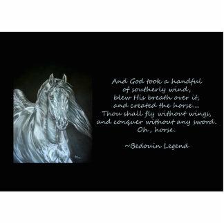 Dios creó el caballo escultura fotográfica