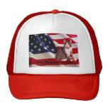 Dios del gorra del gato bendice América