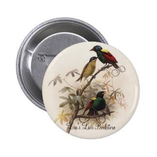 Diphyllodes respublica - Wilson's Bird Of Paradise Button