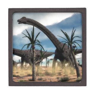 Diplodocus herd in the desert gift box