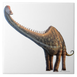 Diplodocus Large Square Tile