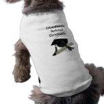 Diploma y casquillo de la graduación (tablero del  camiseta de perrito