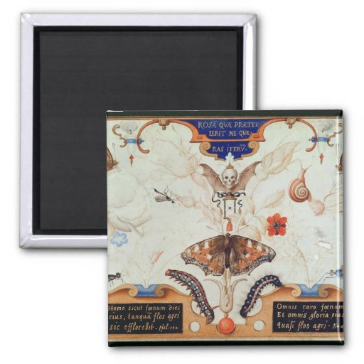 Díptica con las flores y los insectos, 1591 imán cuadrado