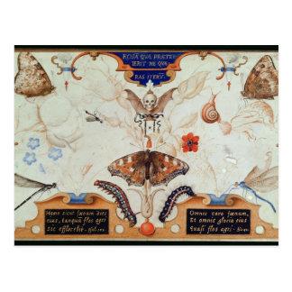 Díptica con las flores y los insectos, 1591 postal