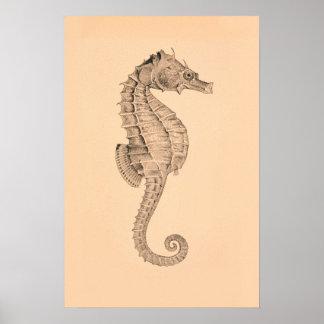 Díptica I del caballo de mar del vintage Poster