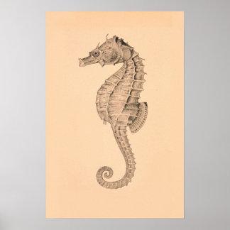 Díptica II del caballo de mar del vintage Poster