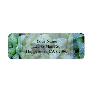 Dirección suculenta verde de encargo de la planta etiqueta de remitente
