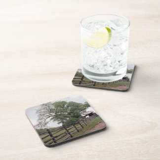 Direction Coasters