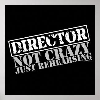 Director: Apenas ensayo no loco Póster