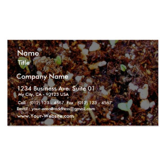 Dirt Plants Sprouts Seedlings Business Card