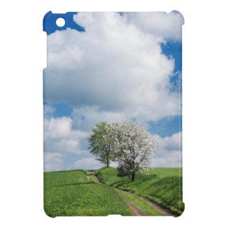 Dirt Road and Apple Trees iPad Mini Case