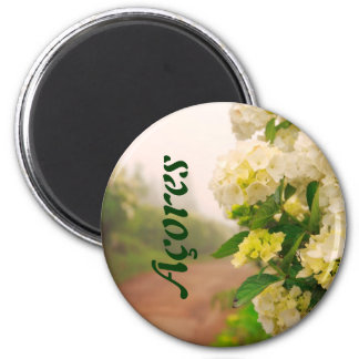 Dirt road and hydrangeas 2 inch round magnet
