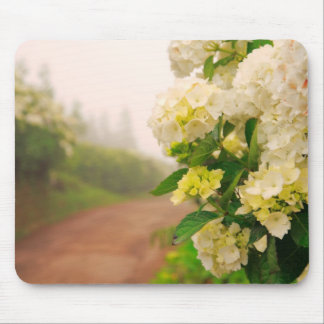 Dirt road and hydrangeas mouse pad