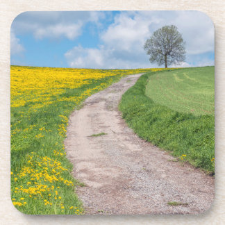 Dirt Road and Tree Beverage Coaster