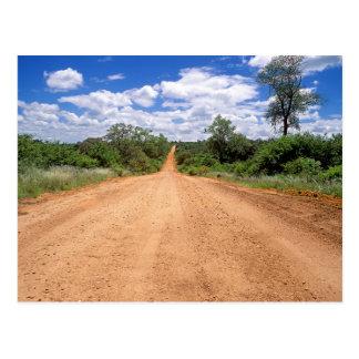 Dirt Road, Kruger National Park, Mpumalanga Postcard