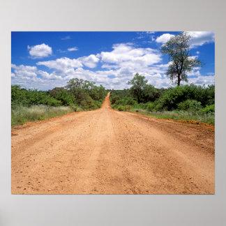 Dirt Road Kruger National Park Mpumalanga Posters