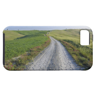 Dirt Road through Fields and Hills, Val d'Orcia, iPhone 5 Covers