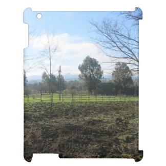 Dirt tossed landscape iPad case