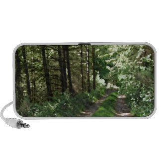Dirt Track Through Trees. Laptop Speakers