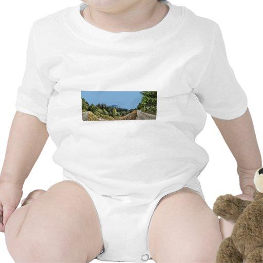 DirtRoadMountainPath082811 Traje De Bebé