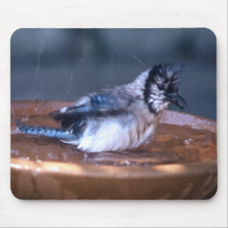 Dirty Bird Mouse Pad