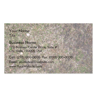 Dirty Brown Dry Grass Texture Double-Sided Standard Business Cards (Pack Of 100)