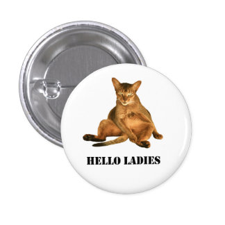 Dirty cat pinback button